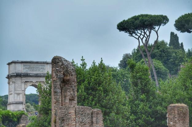 arch forum